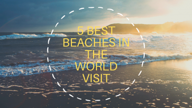 Photo of 5 best beaches in the world to visit